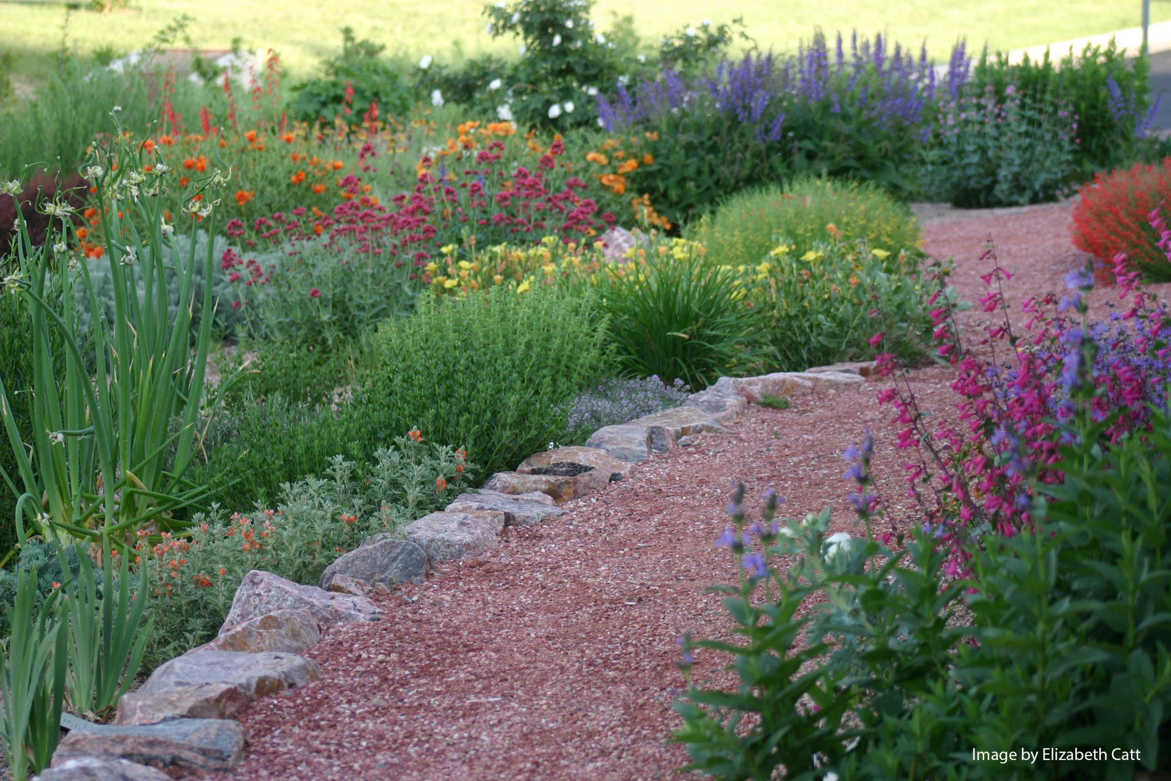 Water-Wise Landscape Discounts